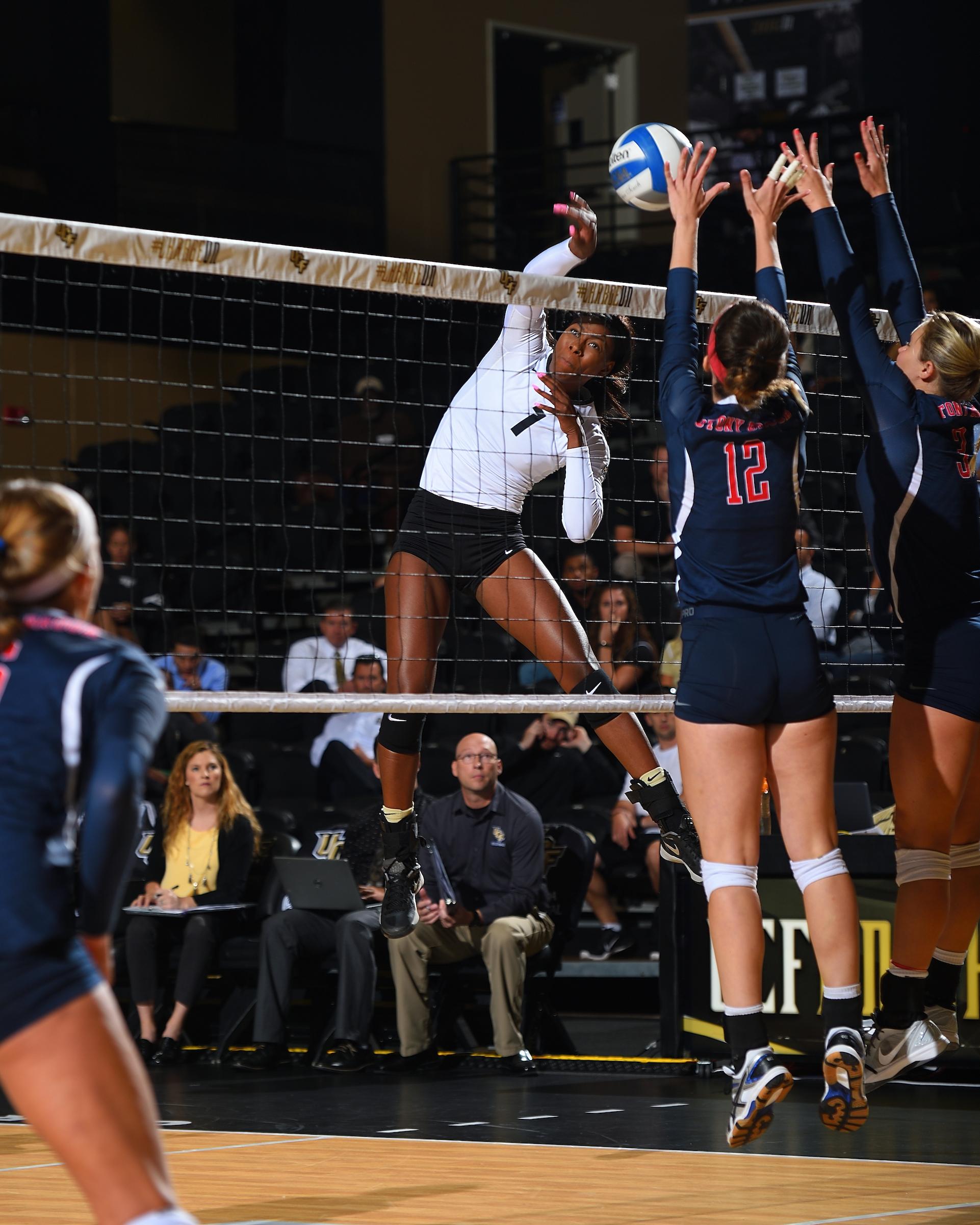 Volleyball vs. Stony Brook (08-26)
